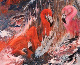 Flamingo – Familie